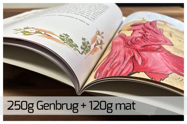 boger-11